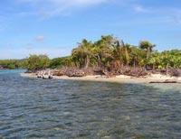 Remax Bay Islands Roatan Buyer S