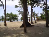 Beach in Front of Gumbalimba Park Restaurant