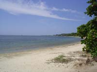 Roatan Tours Excursions Zip and Dip